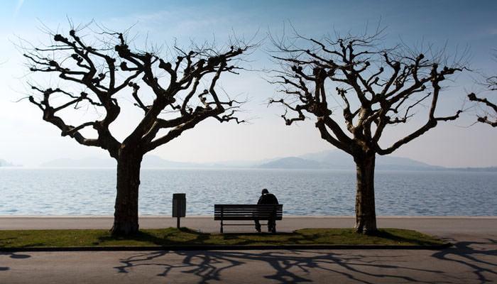 Photograph of Trees next to Lake at Zug, Switzerland