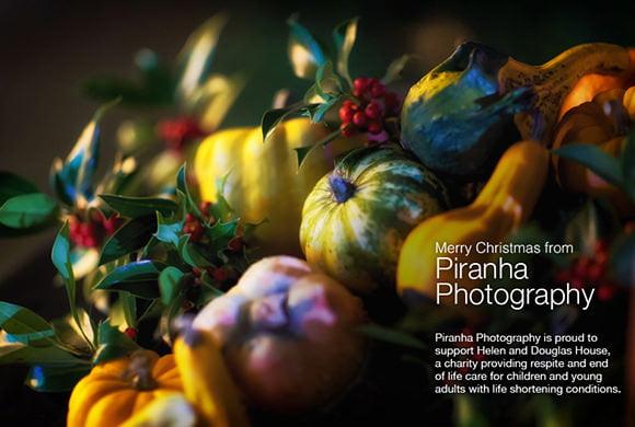 Christmas Piranha Photography