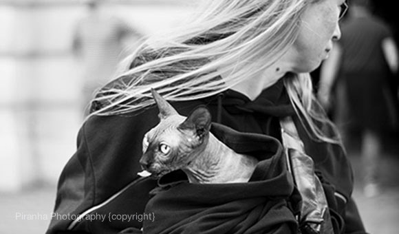 NEWS FLASH - Street Photography and New Leica M240 1