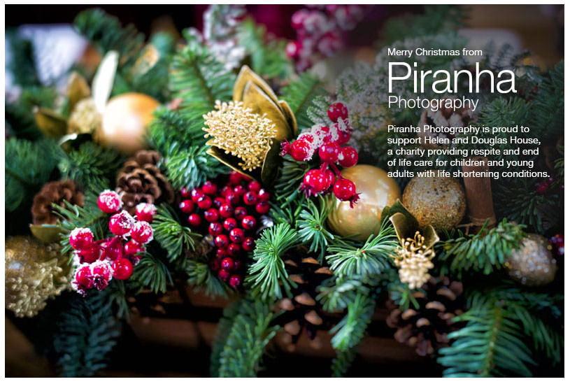 Christmas Card Piranha