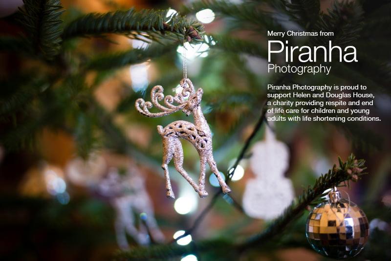 Christmas ecard Piranha 2016